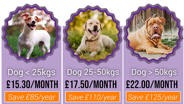 dog health plan prices 1.png