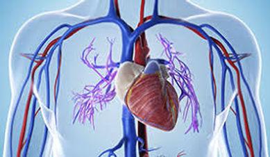 Center for Vascular Care.jpg