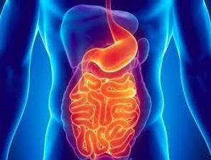 Center for Gastrointestinal Diseases.jpg