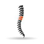 SpineSurgery.png
