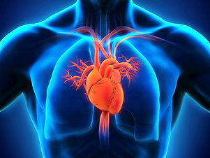 Center for Cardiac Disease.jpg