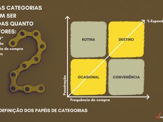 A 2ª etapa do Gerenciamento por Categorias –Definir o Papel da Categoria para loja física ou virtual