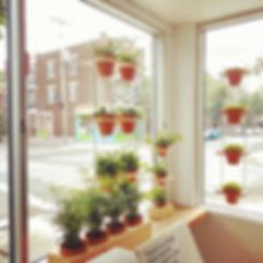 Jardinage urbain, urban gardening, watering plant, water, arroser les plantes, eau, contacter, contact us, order, commander, information