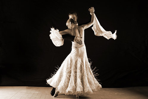 8 Week Adult Absolute Beginner Ballroom and Latin Course