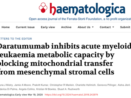 New research from the lab just published in Haematologica!