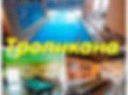 Аватарка тропики.jpg