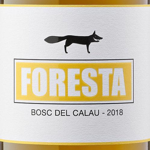 Bosc del Calau 2019