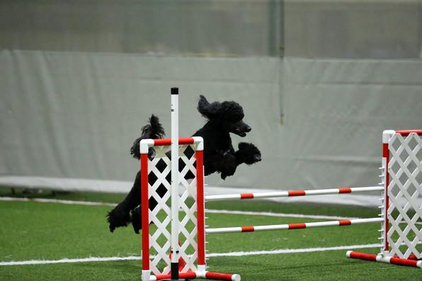 Jump Razmataz!