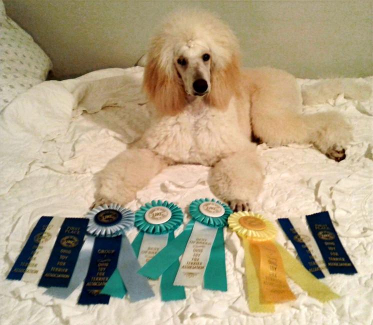 Holly's Big Win!
