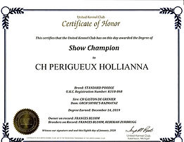 Holly%20champ%20certificate%202_edited.j
