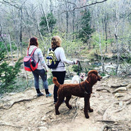 Fran and daughter, Rachel hiking with Finnian in North Carolina.