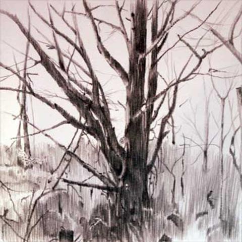 Tree DRWNG