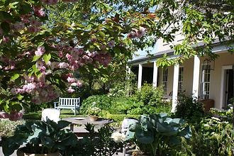 Garden at EdenHouse.jpg