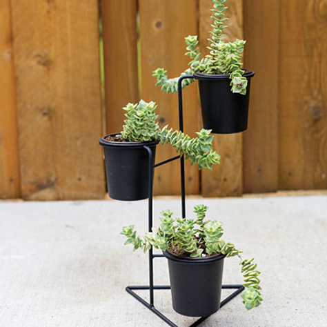 """DONAHUE PLANT STAND11""""X10.5""""X14.25"""""""