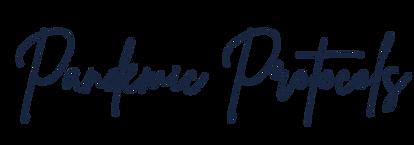 Pandemic Protocols.png