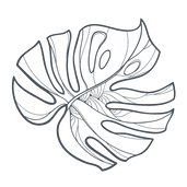 Style Haus Salem Monstera Leaf Logo