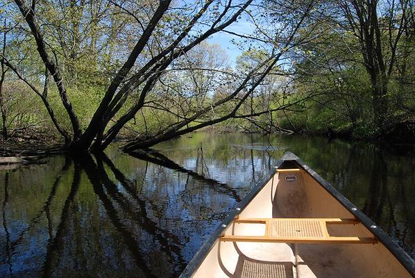 Canoe_Neponset River_Canton_Palmer photo.JPG