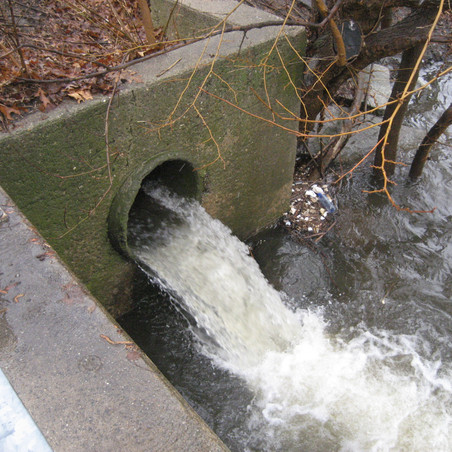 BREAKING: Governor Signs the Sewage Notification Bill!