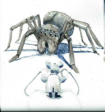 Ollie_Sketch_K_Spider_001.jpg