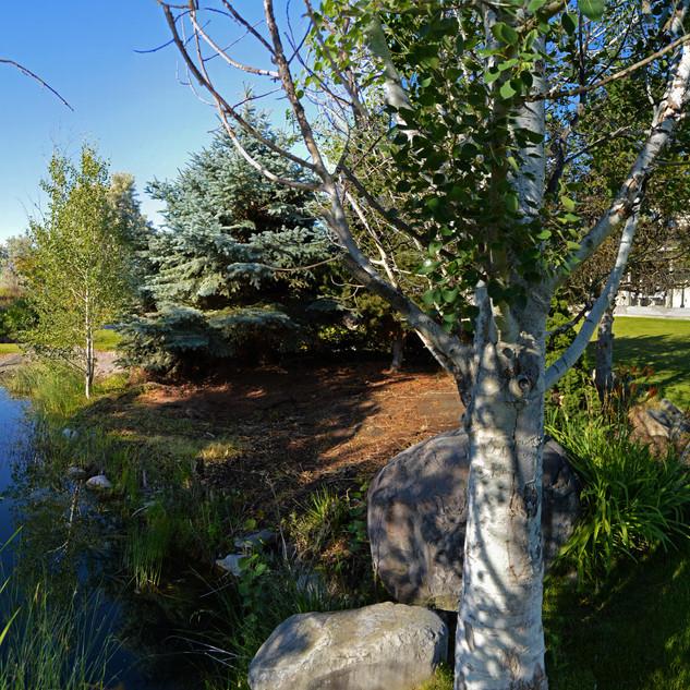 Gorgeous Moses Lake home