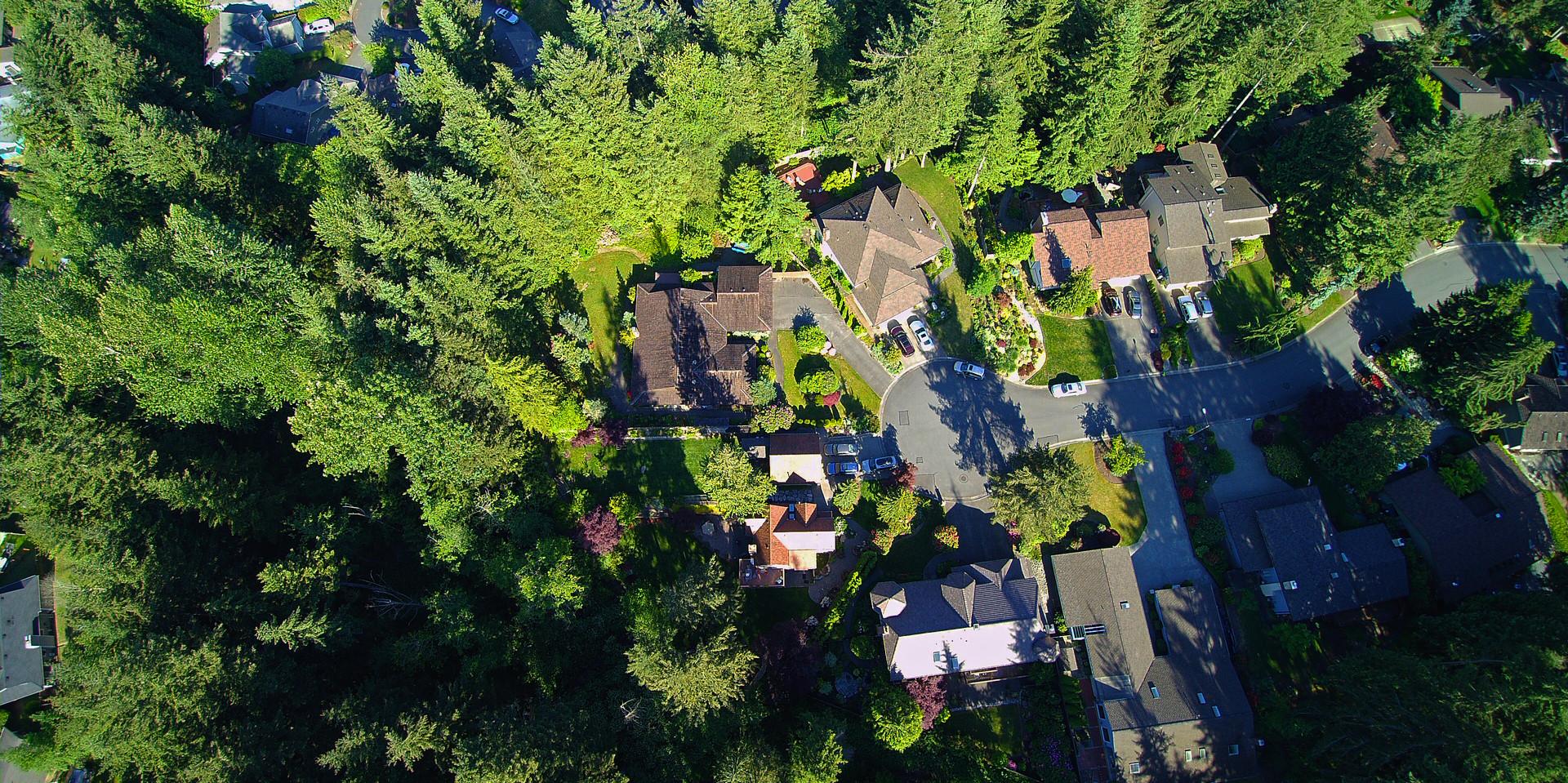 Western Washington - Bothell