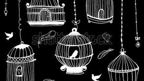 Pourquoi la SOPHROLOGIE va plus loin que la méditation en temps de confinement? #liberté#valeurs#zen