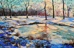 Ice Pond Sevenoaks Kent
