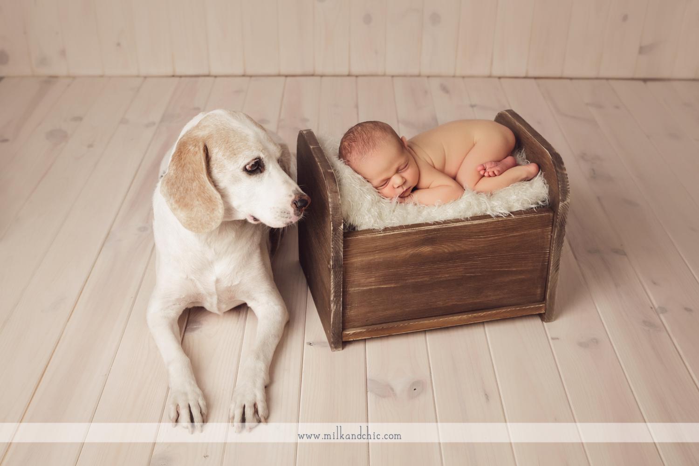 fotos recien nacido valencia