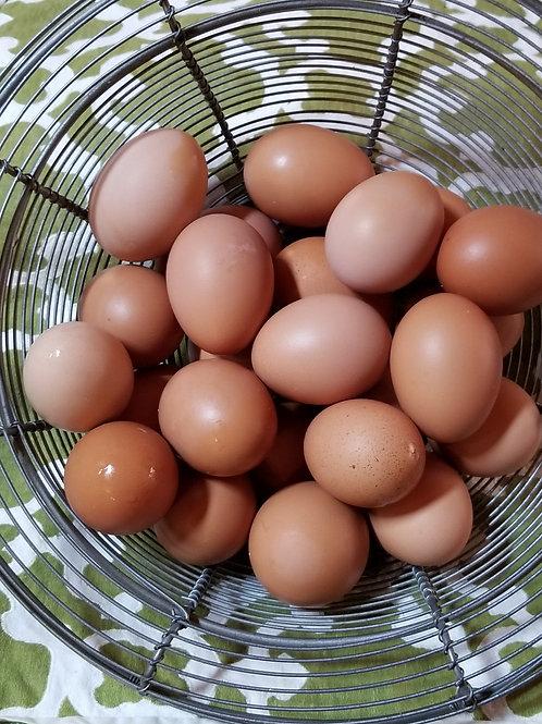 Farm Fresh Eggs are Here!
