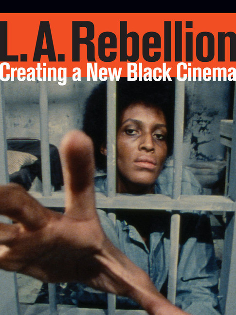 """Bruising Moments: Affect and the L.A. Rebellion"""