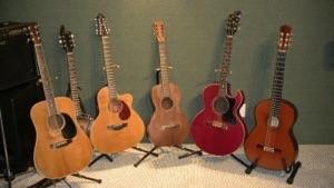 Mangrove Music Acoustic Guitars