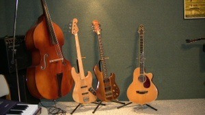 Mangrove Music Bass Collection