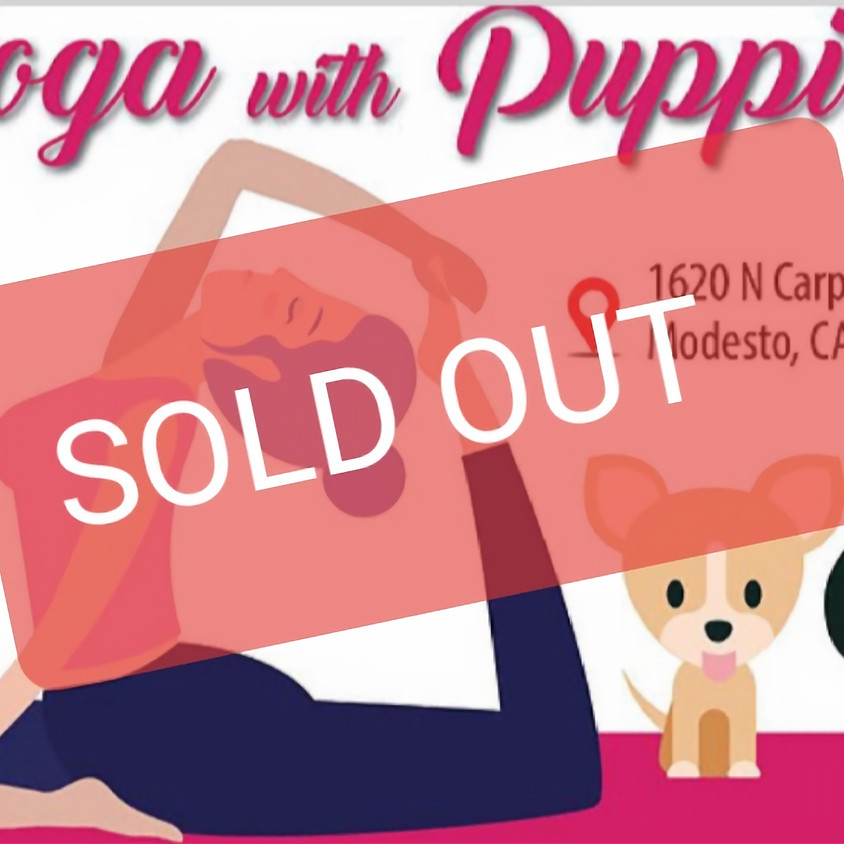 Yoga with Puppies! 11 am Session