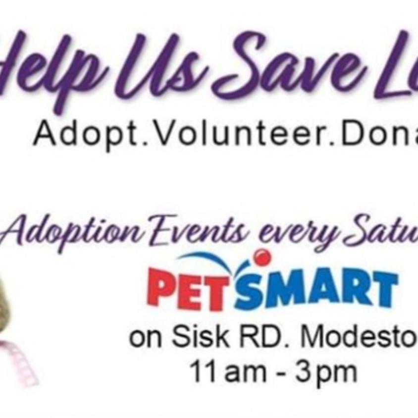 Adoption Event