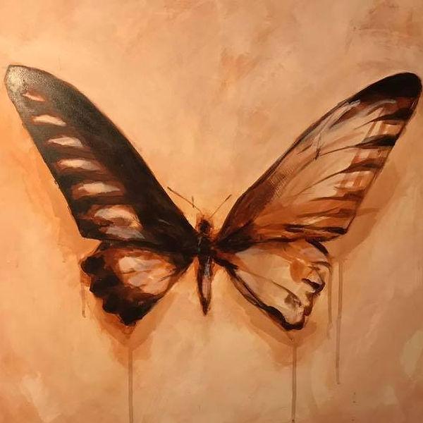 sturdy butterfly.jpg