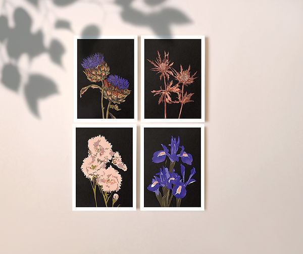 illustration riso print beautiful decorative flower black background close up series