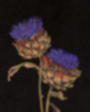 fleurs rgb 300 dpi (3).jpg