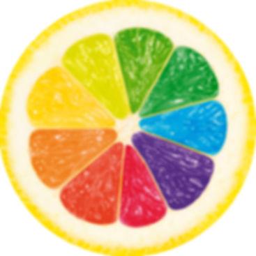 com et compagnie creation site internet logo flyer depliant plaquette  haute garonne ariege comminges couserans volvestre