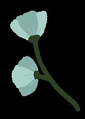 fleurs bleues.png