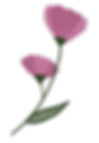 fleurs roses.png