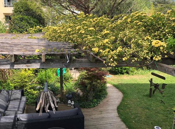 La pergola de la terrasse