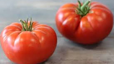 TOMATE RONDE ANCIENNE (1kg)
