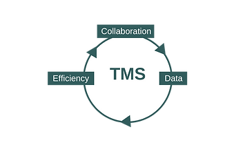 TMS model.png