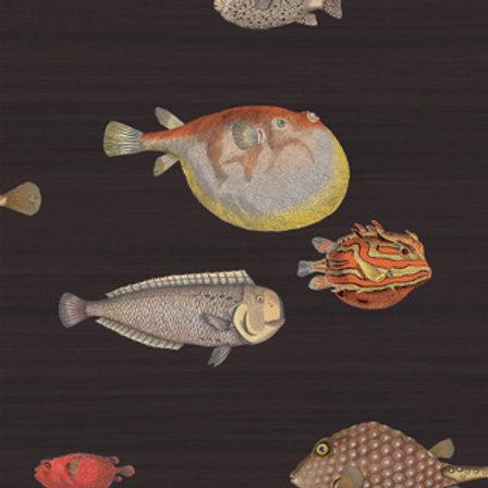 Acquario - Cole & Son Fornasetti