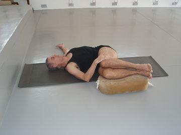 Iyengar Yoga Sequences, David Jacobs,iyengaryogasequences