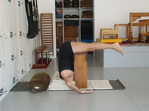 Iyengar Yoga Sequences, David Jacobs