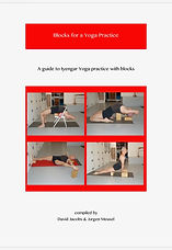 Iyengar yoga practice with blocks
