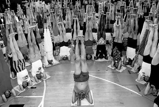 BKS Iyengar Yoga Centre, iyengaryogawithdavid,