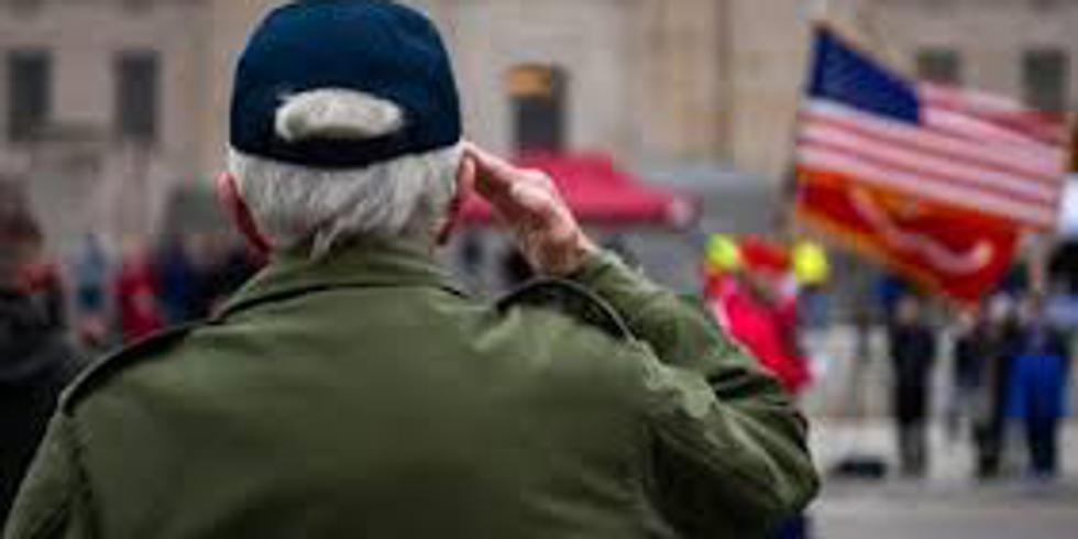 Veteran's Day Parade-Roanoke