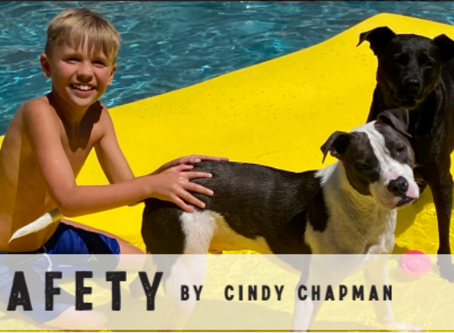 76247 - Pet Safety